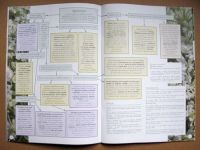 miniature 3 pour le portfolio cahier-6-aventure-au-coin-du-bois