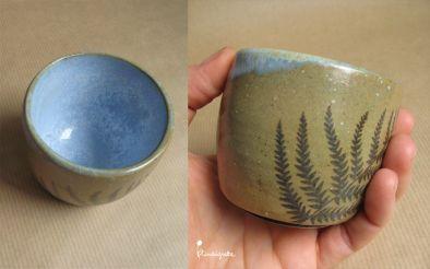 miniature 5 pour le portfolio serie-bleue-fougeres