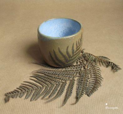 miniature 6 pour le portfolio serie-bleue-fougeres