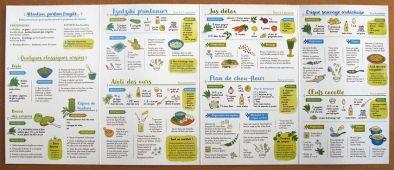 miniature 3 pour le portfolio je-cuisine-l-ail-des-ours-4e